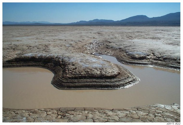 Etats-Unis  -  Désert des Mojaves