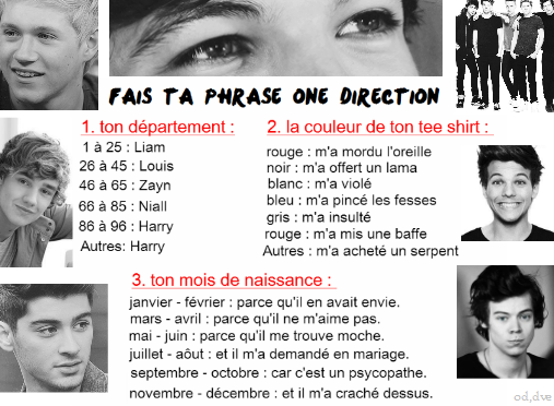fais ta phrase one direction ❤❤