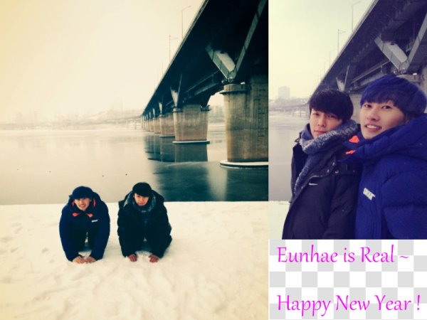 Bonne Année ♥ ~