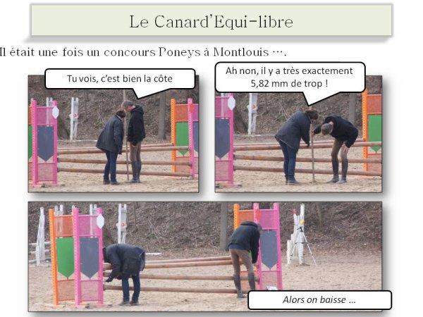 CSO PONEYS MONTLOUIS 26/02/2012 PAR ISABELLE