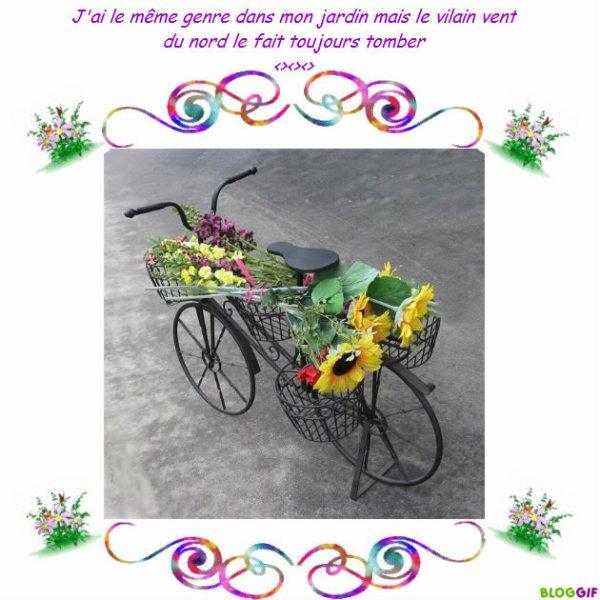 Velo de decoration blog de moumounette30 - Velo decoration ...