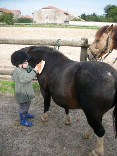 max à l'équitation