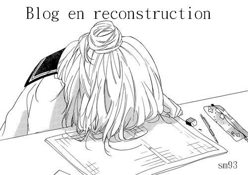 Blog en reconstruction