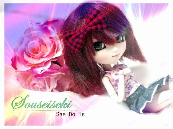 Article spécial pour Sae-Dolls