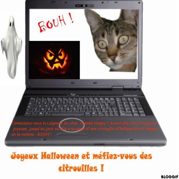 Joyeux Halloween un peu beaucoup en retard !!! :p (Article de Popo)