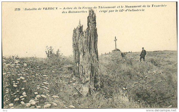 BATAILLE DE VERDUN 1916 : JOURNEE DU 14 JUIN 1916