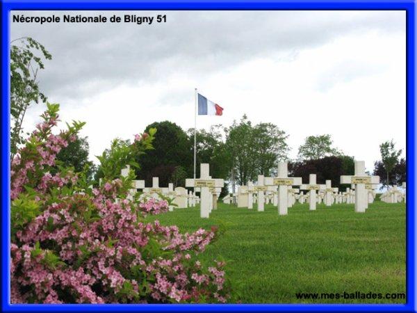 NECROPOLE NATIONALE DE BLIGNY : CONFLIT 1914 1918