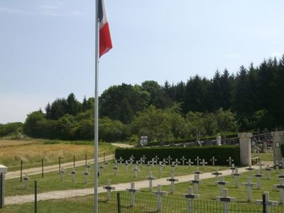 NECROPOLE NATIONALE DE TROYON : CONFLIT ?