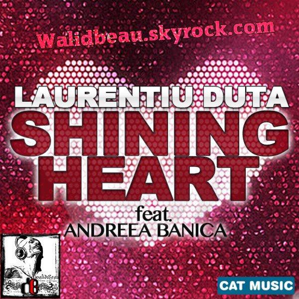 Laurentiu Duta feat. Andreea Banica  / Shining Heart (Extended) (2012)