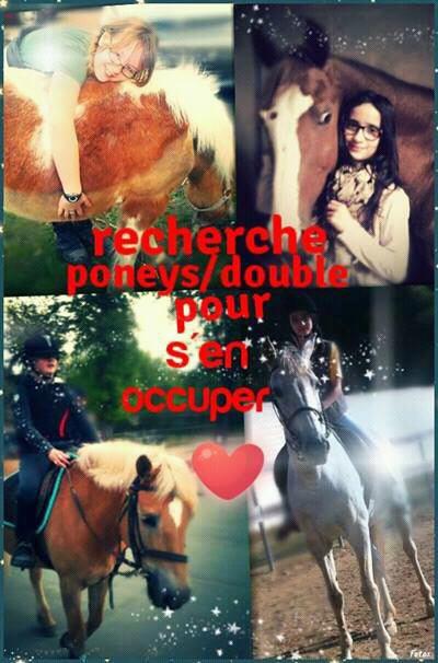 Recherche poneys/doubles pour s'en occuper