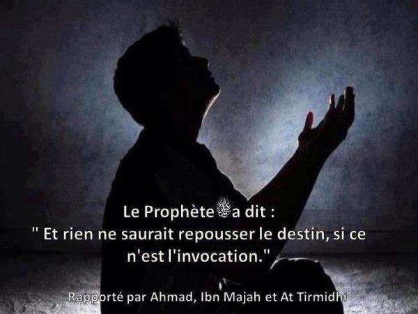 « Si tu invoques Allah sincèrement, Allah exaucera tes invocations. » [An-Nassaa'i (Al-Albaani : Sahih)]