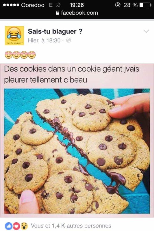Je sais que sa fait pas partie du blog mais bon qui veut mange ce cookies ??
