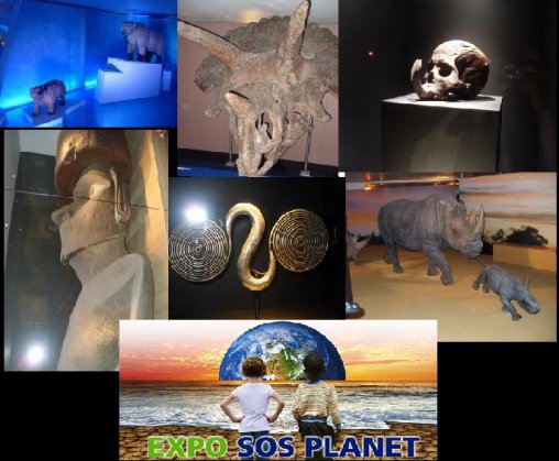 SOS-planet expo: Guillemin