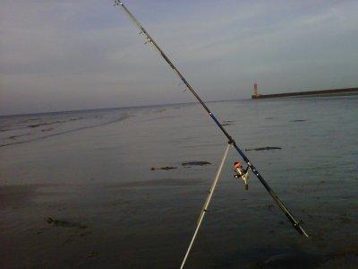peche de 18h30 a 23h30 coff 72 totale fish 7 carlets 1 limande et 1 bars  32 cm  beaucoup de crevettes dans les vague le poisson et de retour