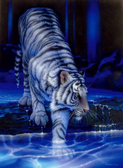 Historique Du tigre blanc