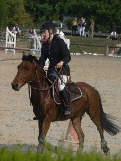 """"""" Le cheval et l'homme, naturellement partenaire ♥ """""""