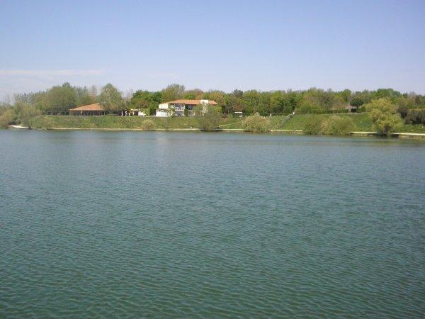 au lac de trizay (departement 17)