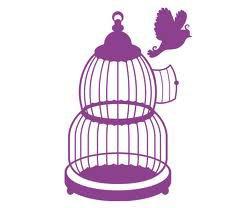 """"""" Les oiseaux nés dans une cage croient que s'envoler est une maladie """" Alejandro Jodoroxsky"""