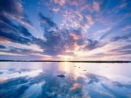 """Ma devise """" les pieds sur terre et la tête dans les nuages """""""