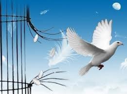 La vengeance est incompatible avec la liberté