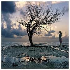 « Dieu n'est pas venu supprimer la souffrance. Il n'est même pas venu pour l'expliquer. Il est venu pour la remplir de Sa présence. »   (Paul Claudel)