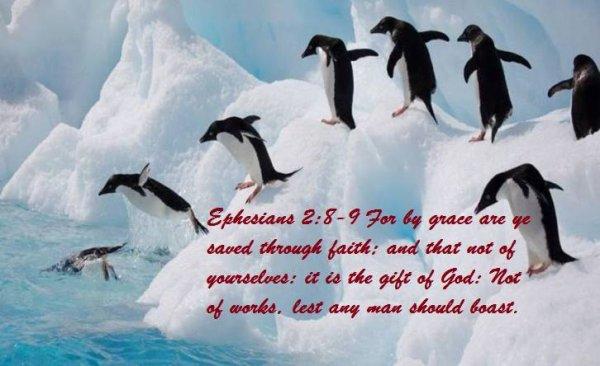 """"""" Car c'est par la grâce que vous êtes sauvés, par le moyen de la foi. Et cela ne vient pas de vous, c'est le don de Dieu. Ce n'est point par les ½uvres, afin que personne ne se glorifie. """""""