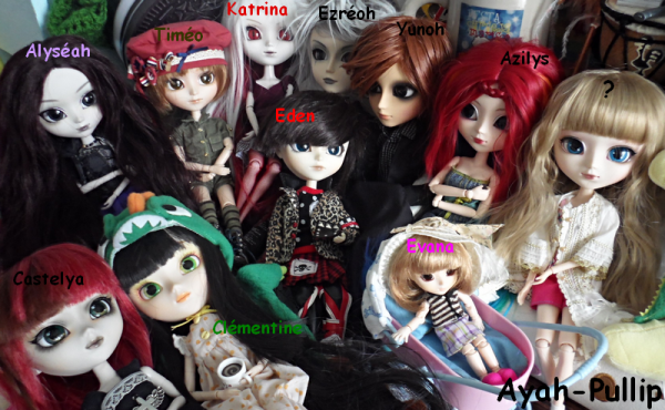 Photo de groupe pour RainbowToxicornPullip