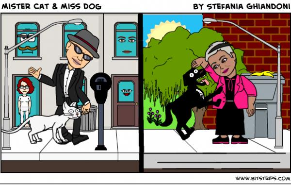 Mister Cat & Miss Dog
