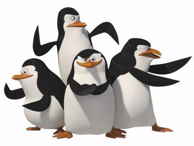 le pingouin judoka