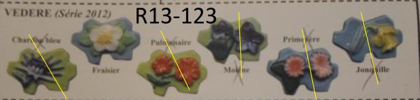 R13-123