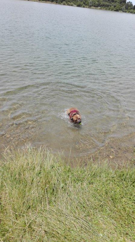 Balade au lac