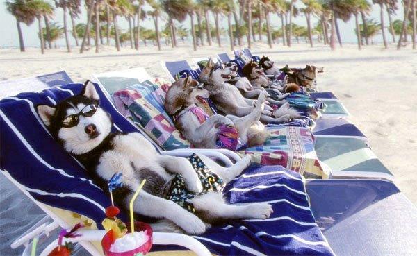 la sieste à la plage !