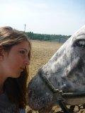 Photo de Peace-Horses