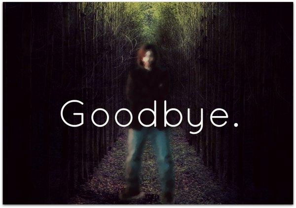 Chapitre 1: Goodbye