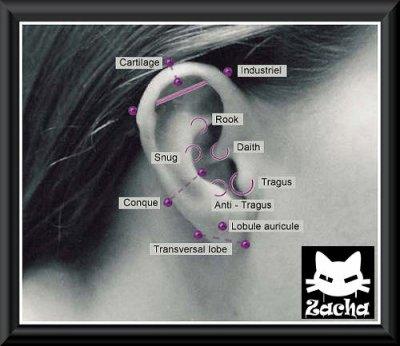 Les différents types de piercings !