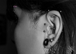 Cartilage et replis d'oreille