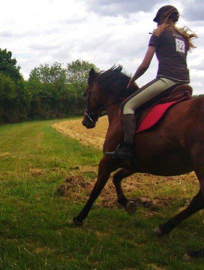 Être heureux à cheval, c'est être entre ciel et terre, à une hauteur qui n'existe pas.