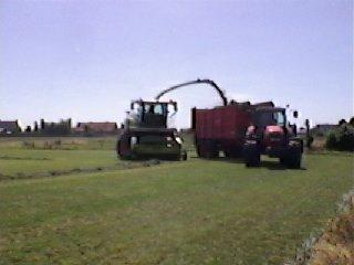 ensilage d'herbe chez mon voisin