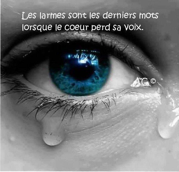 les larmes sont les derniers mots lorsque le coeur perd sa voix.