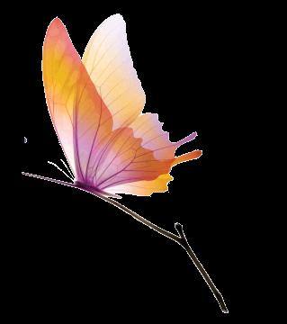 L'amour c'est comme un papillon, il est hors de portée quand on le chasse ; mais si on le laisse tranquille, il peut très bien venir se poser sur notre épaule.