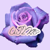 AJ2K13