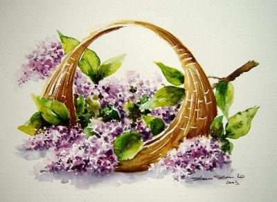 Panier de lilas la peinture le dessin mes passions mon - Dessin de lilas ...
