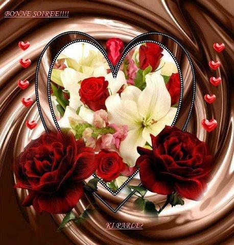 kelle sont magnifiques les roses