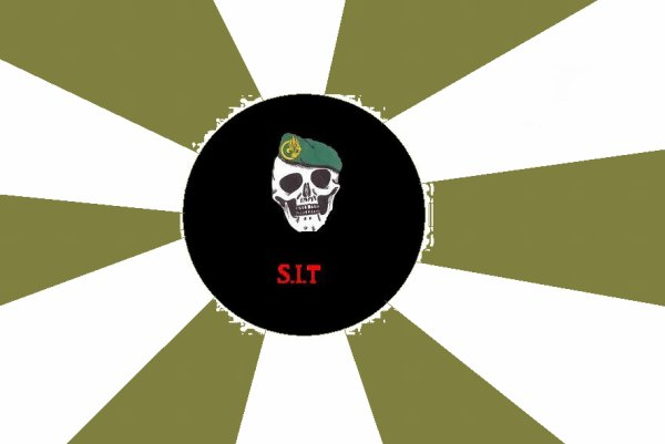 le sigle de notre TEAM : S.I.T ( section intervention taissy )