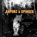 Photo de Kaponz-aime-Spinoza