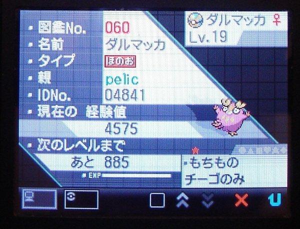Le bas de l'écran des stats n°1 de Darumakka shiney