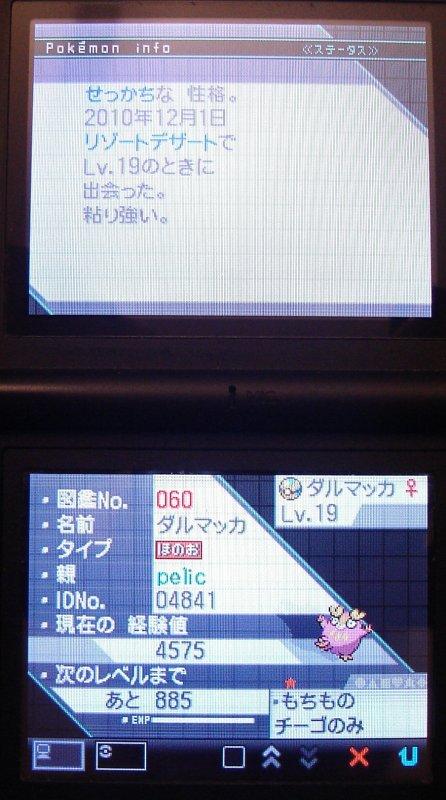 l'écran des stats 1 de Darumakka shiney