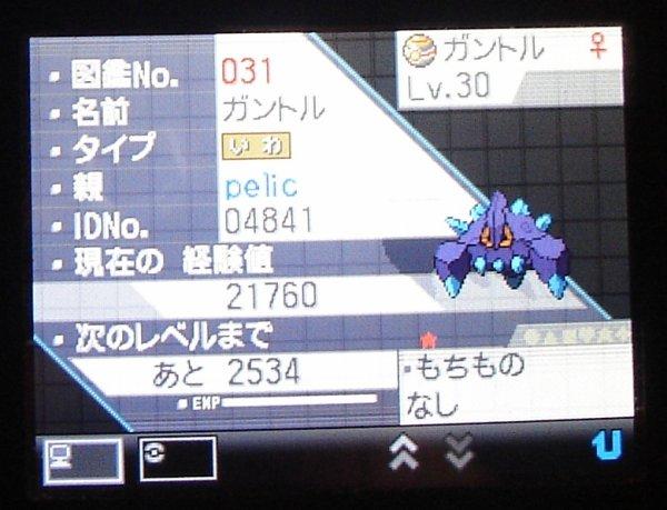 l'écran des stats 1 de Gantoru shiney rencontré le 20 décembre 2010