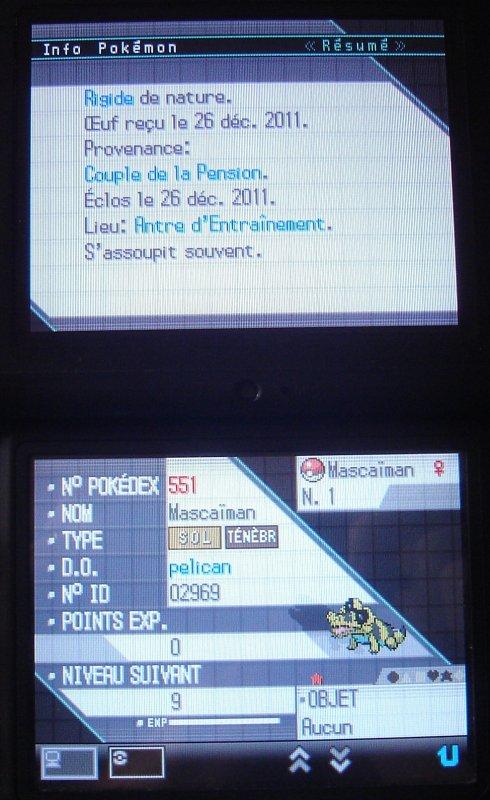 Mascaiman, l'écran des stats n°1