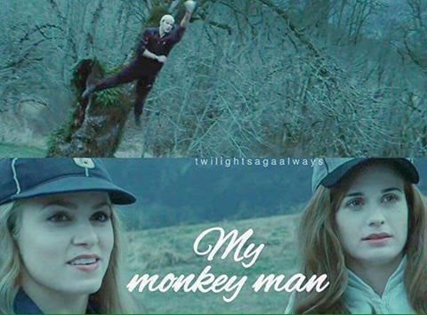 My monkey man (l)